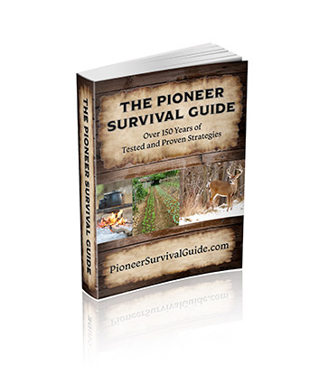 Pioneer Survivor Guide